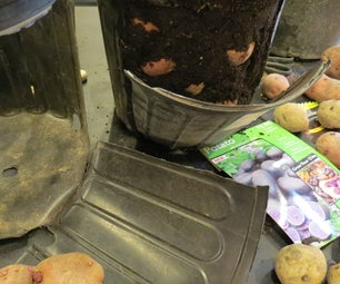 How to Make a Recycled Potato Bucket: Harvest Your Potatoes Anytime!