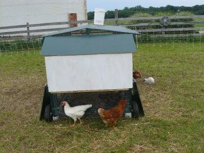 Add the Nest Box