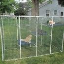 Cat Enclosure