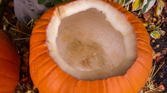 Best Pumpkin Preservation Method