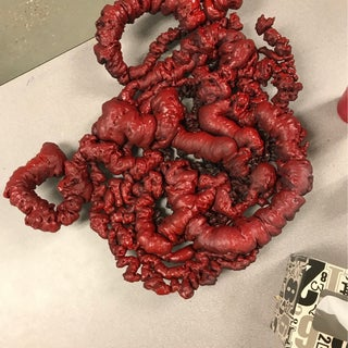 Guts and Gore Halloween Props