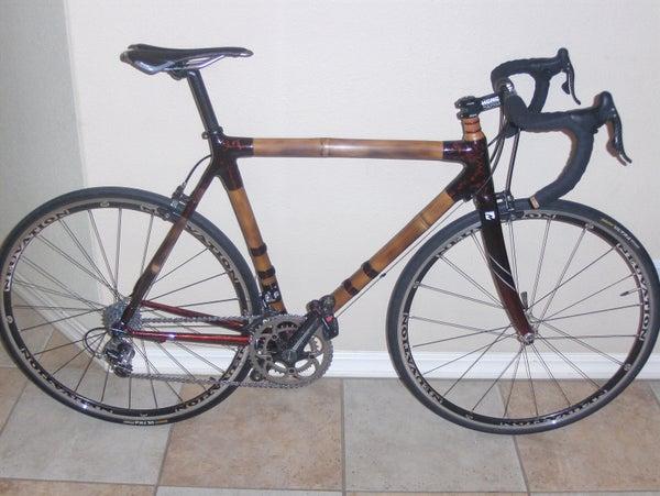 Bamboo Bike #2