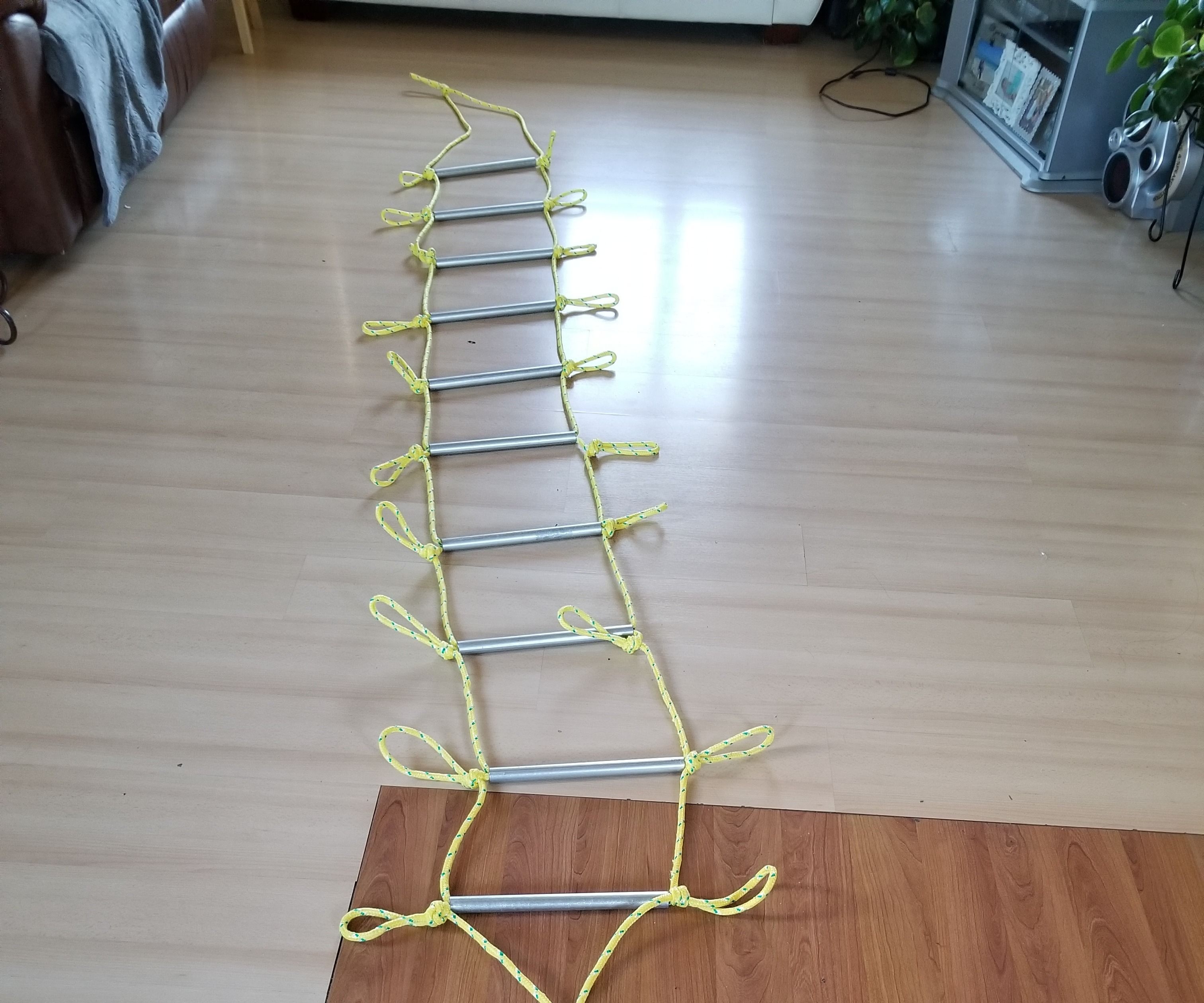 $26 Fire Ladder