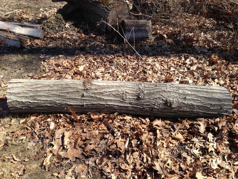 Selecting Logs to Split