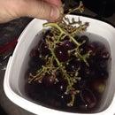 EASILY De-stem Grapes