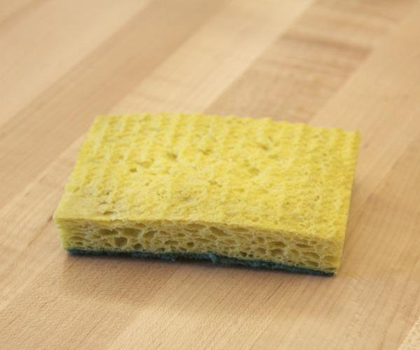 Disinfect a Sponge