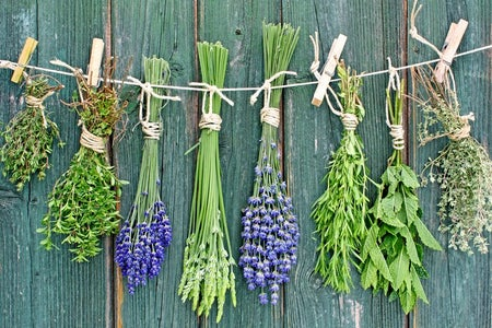 Natural Remiedies (herbs and Spices)