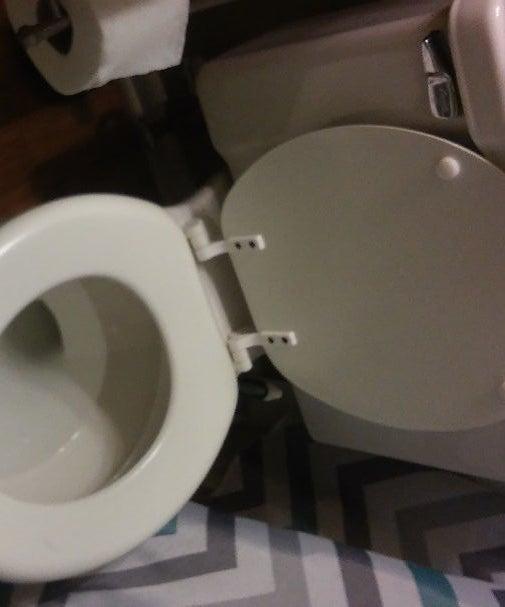 Chemical Free Toilet Scrub