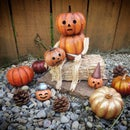 Pumpkin Man Home Decor