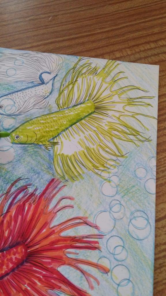 5th Fish