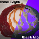 Eatable Fluorescent Caramel Candies