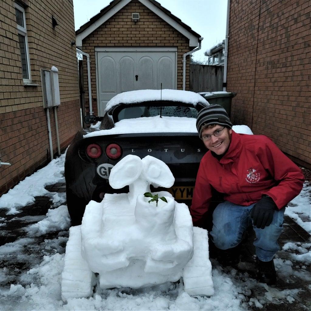 Snow Wall-E