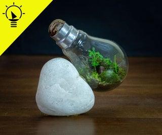 如何制作一个灯泡玻璃体