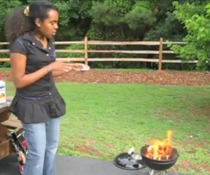 BBQ Grilling at a Park
