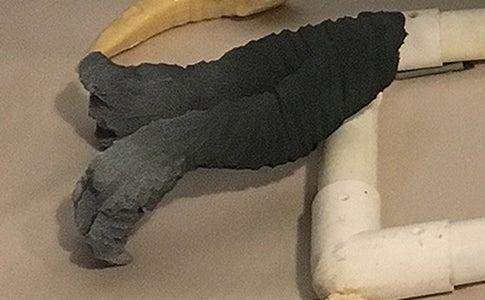 The Feet & Arms