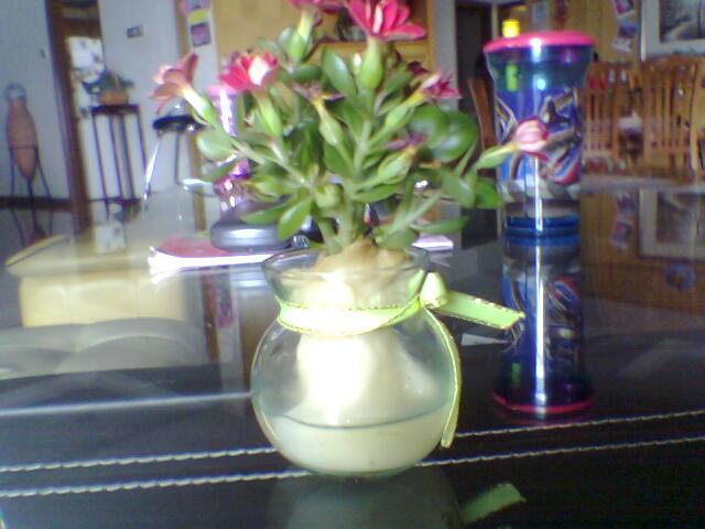 Flower Holder!
