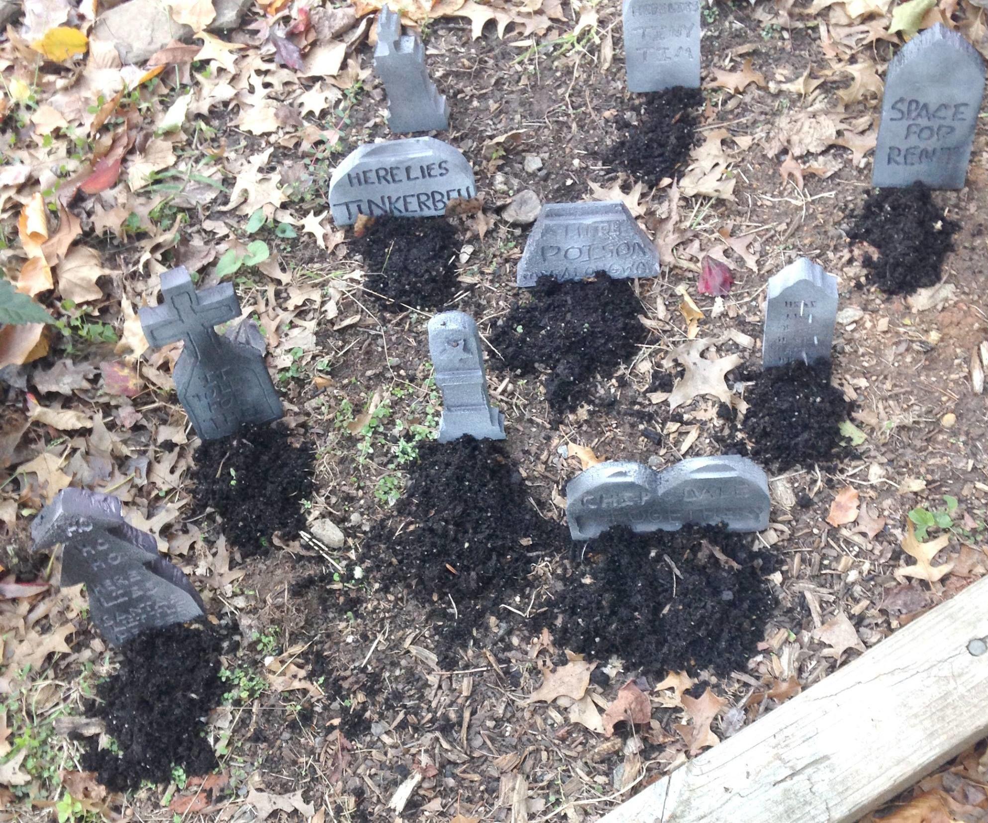 Tiny Tombstone Cemetery
