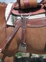Cinching Up the Saddle