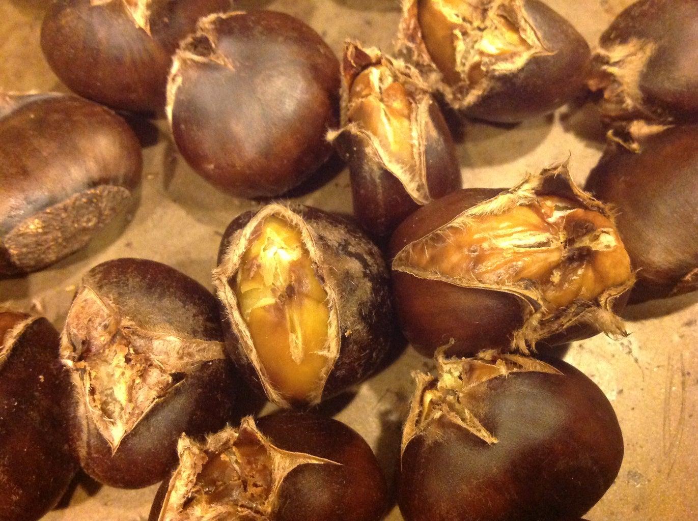 Spectacular Roasting Chestnut Explosion