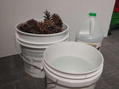 Preparing Your Pine Cones