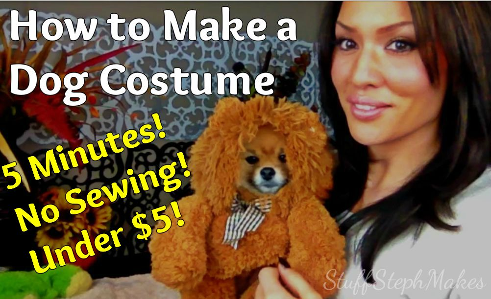 Super Easy *No Sew* Dog Costume!