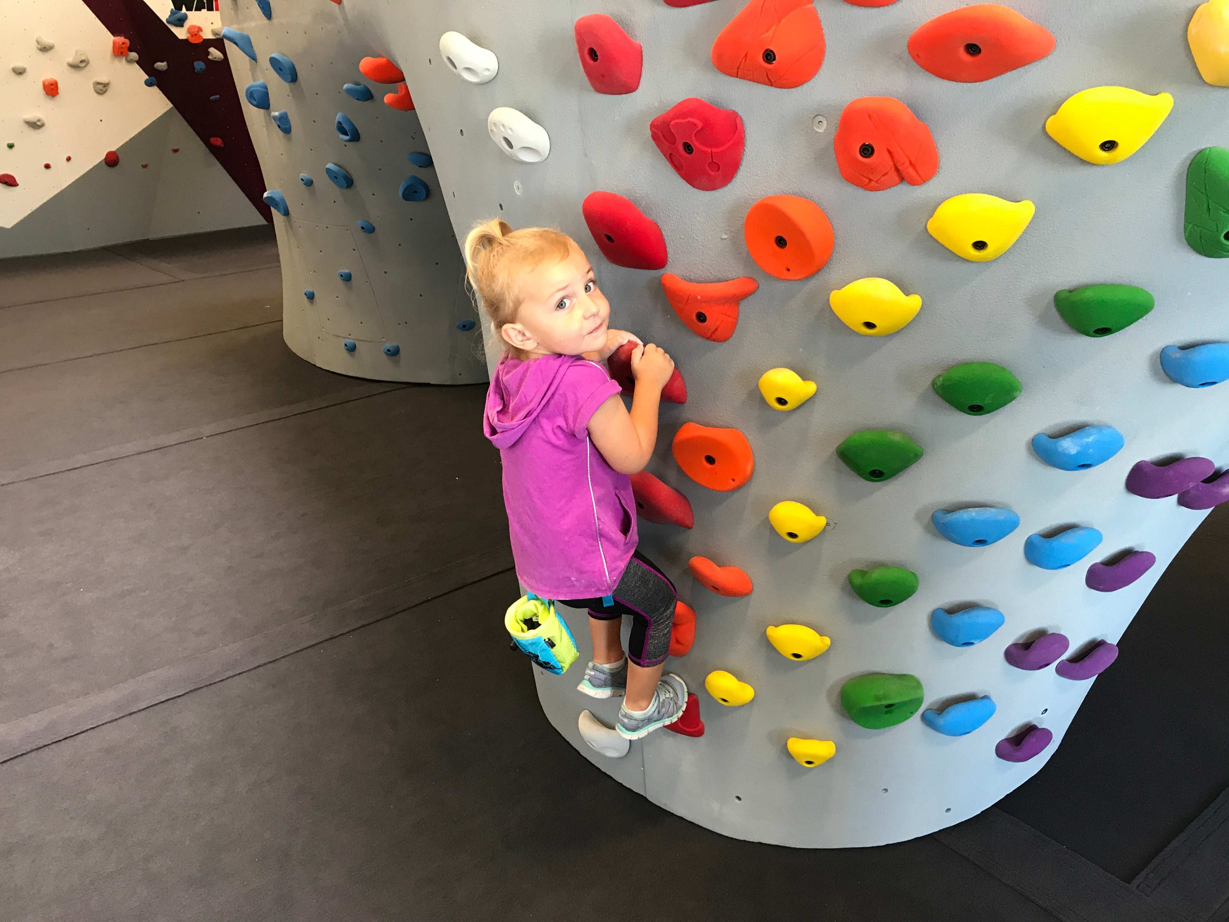 Perfect for Kids and Beginners Climbing Holds 12 Piece Easy Climbing Hold set