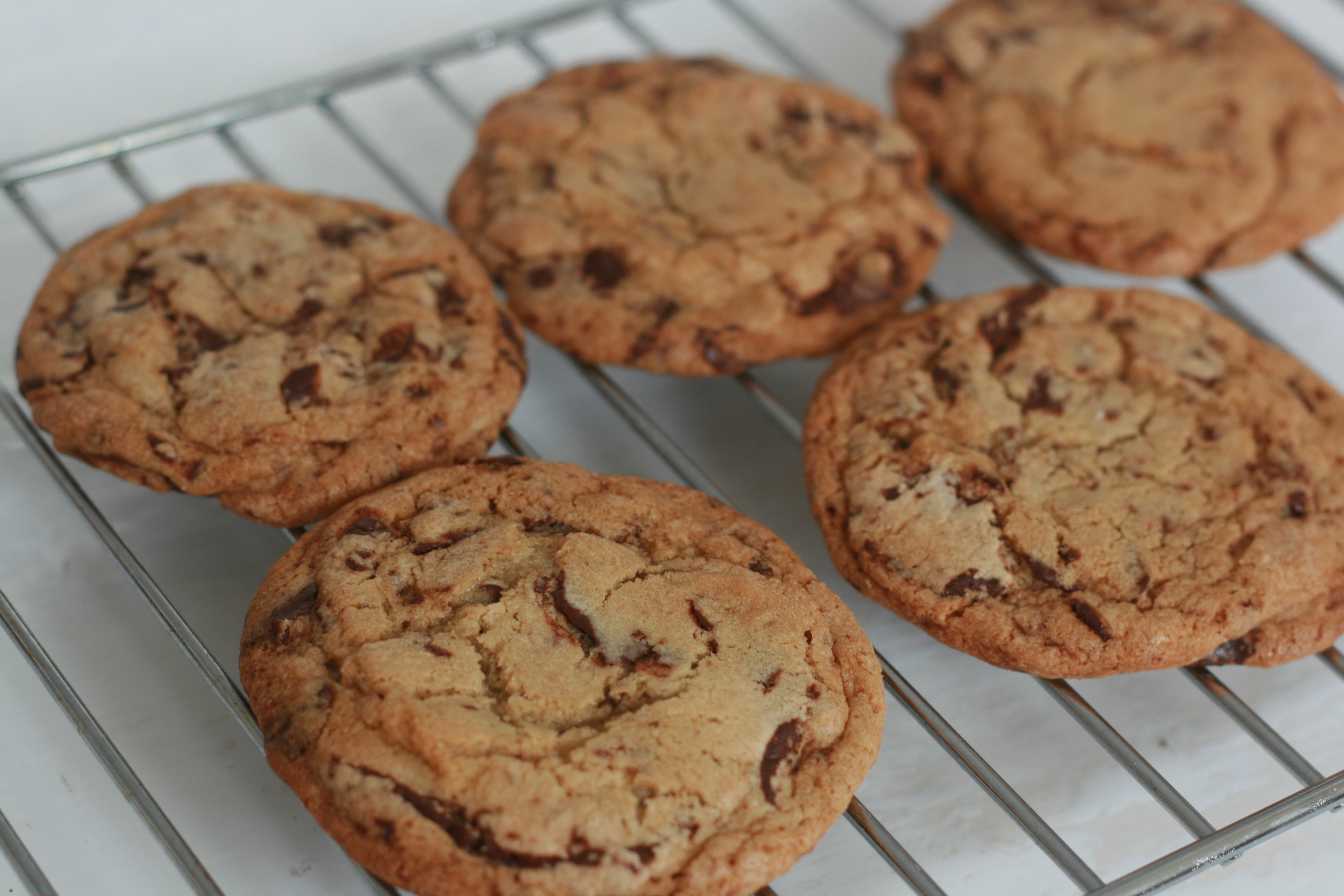 Best Ever Chocolate Chip Cookie Recipe