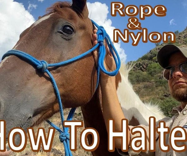 How to Halter a Horse -Rope Halter-