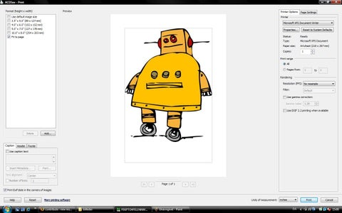 How to Print Pictures in the Right Size Using ACDSee