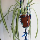 Up-cycled Plastic Plant Hanger