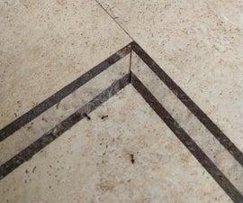Fix That Ant Problem