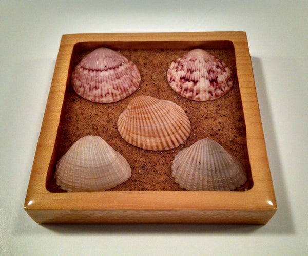 Sea Shell Drink Coaster