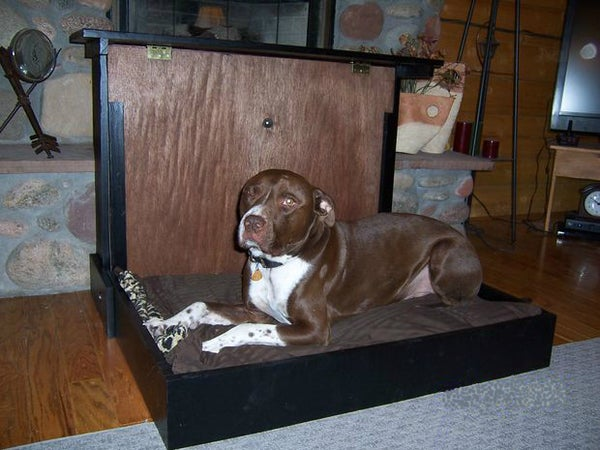 BigDog Murphybed and Fold-Up-Kennel