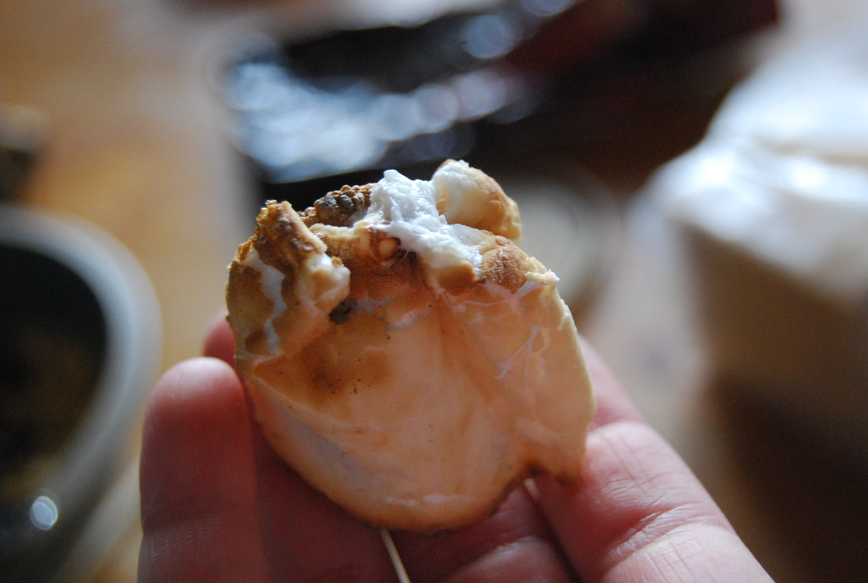Bite-sized S'more Pockets