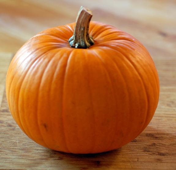 Pumpkin Carving!!!