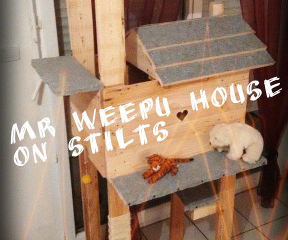 Pallet cat house on stilts