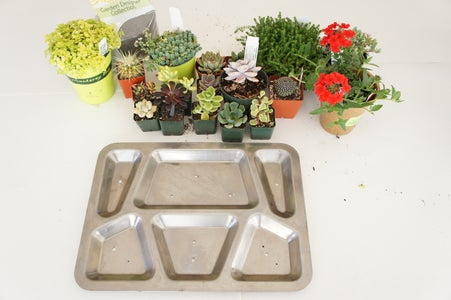 WWII Military Mess Tray Planter