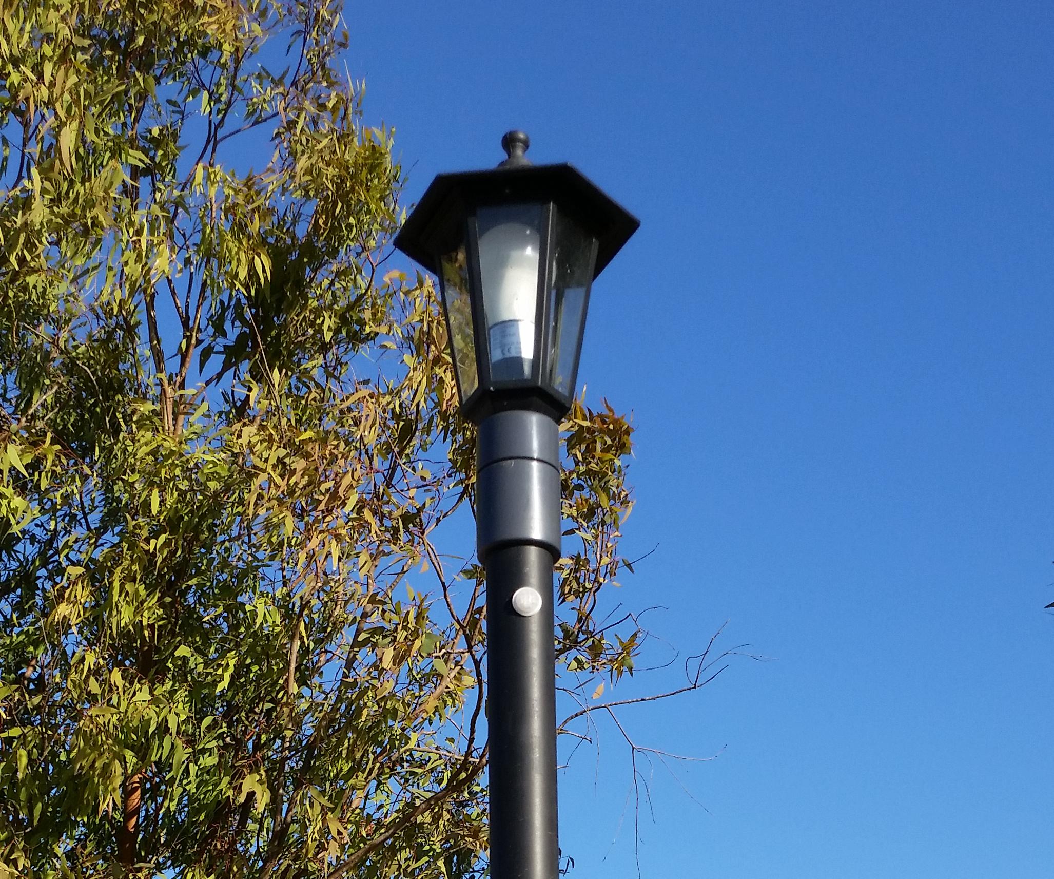 $20 Streetlamp / Streetlight