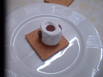 Step Two: Prepare the Super High Tech Marshmallow/Chocolate Module