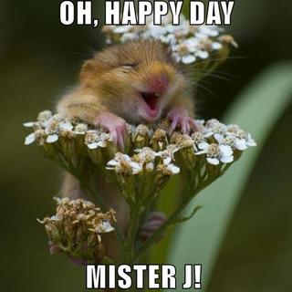 OH, HAPPY DAY MISTER J!.png