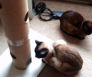 Starvation Tower (for Cats)