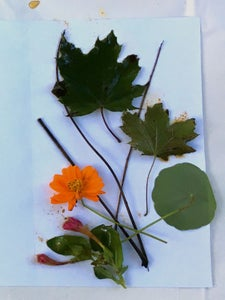 Lay Out the Leaves and Flowers