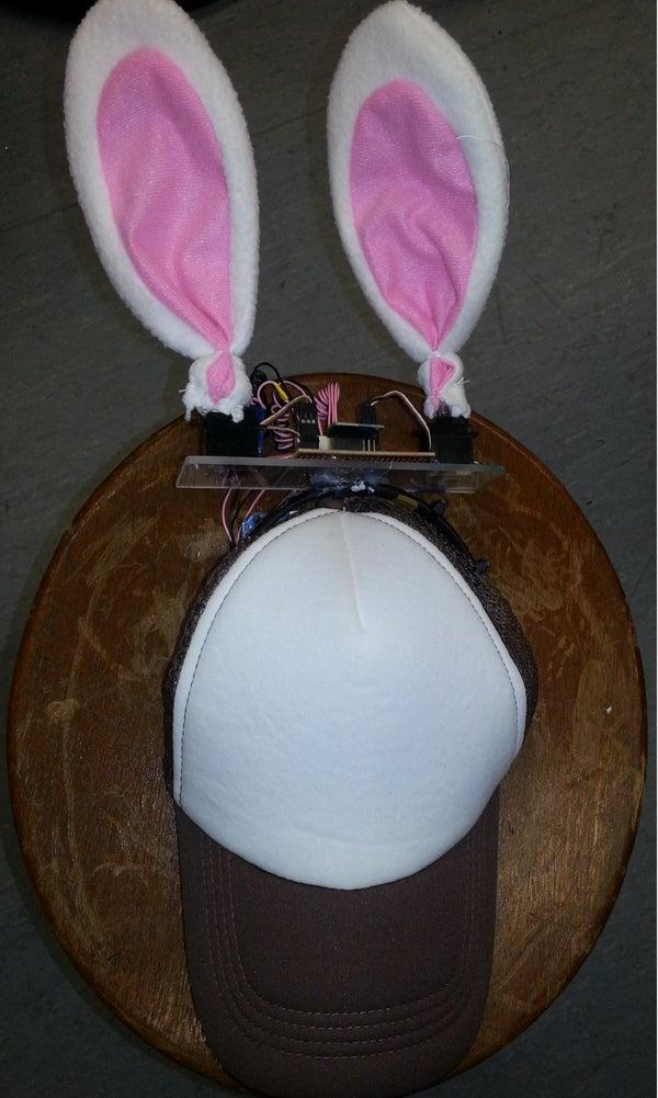 Rabbit Ears on a Cap