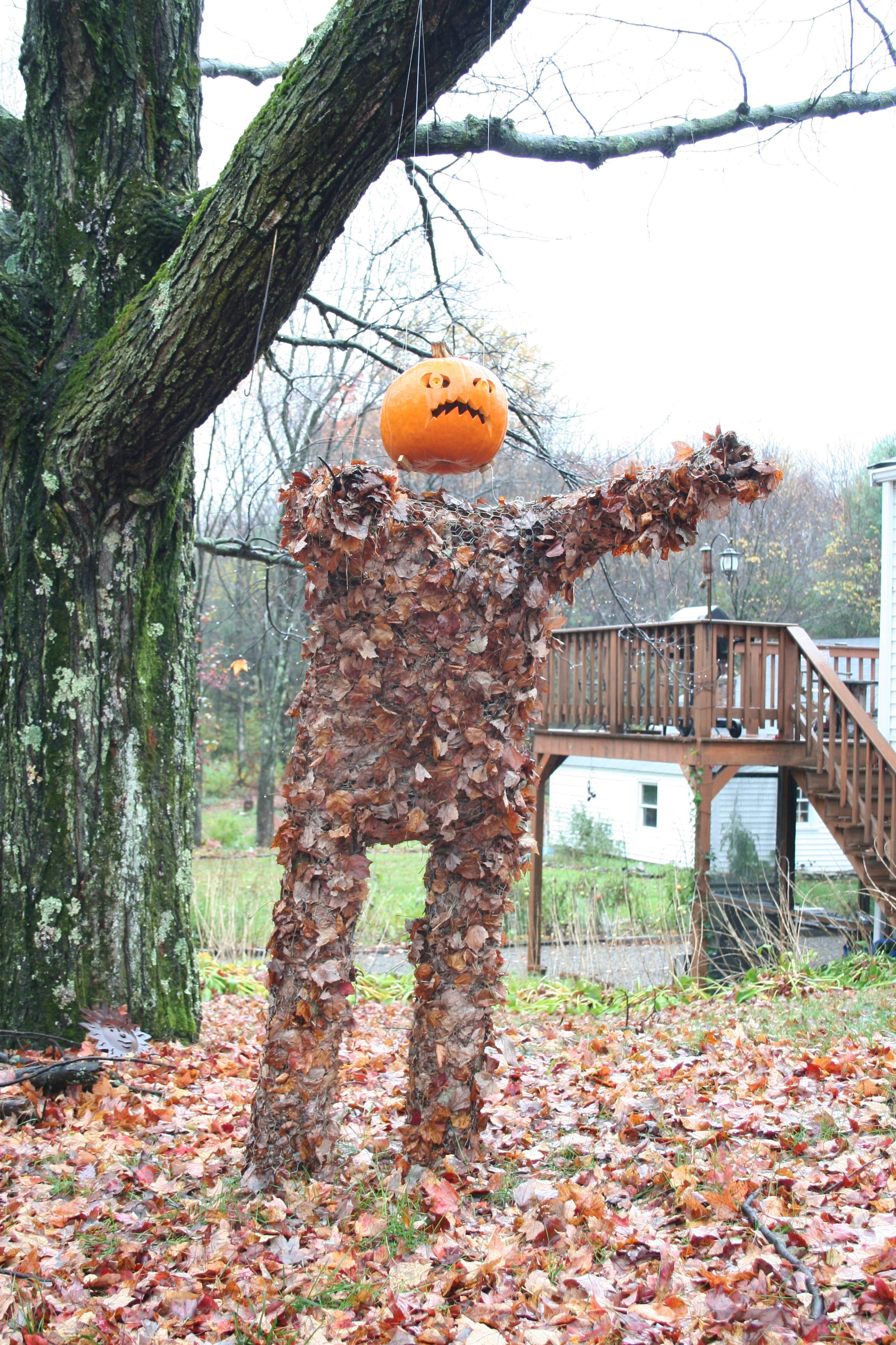 The Leafman