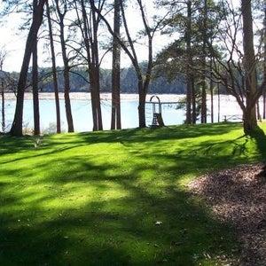 lake view matthew st.jpg