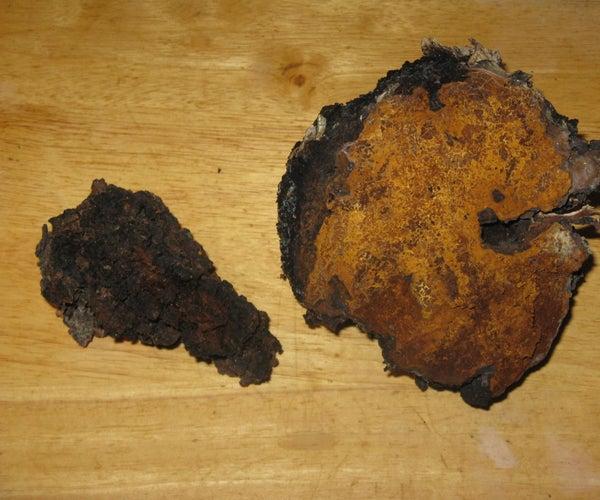 The Three Uses of Chaga Mushroom