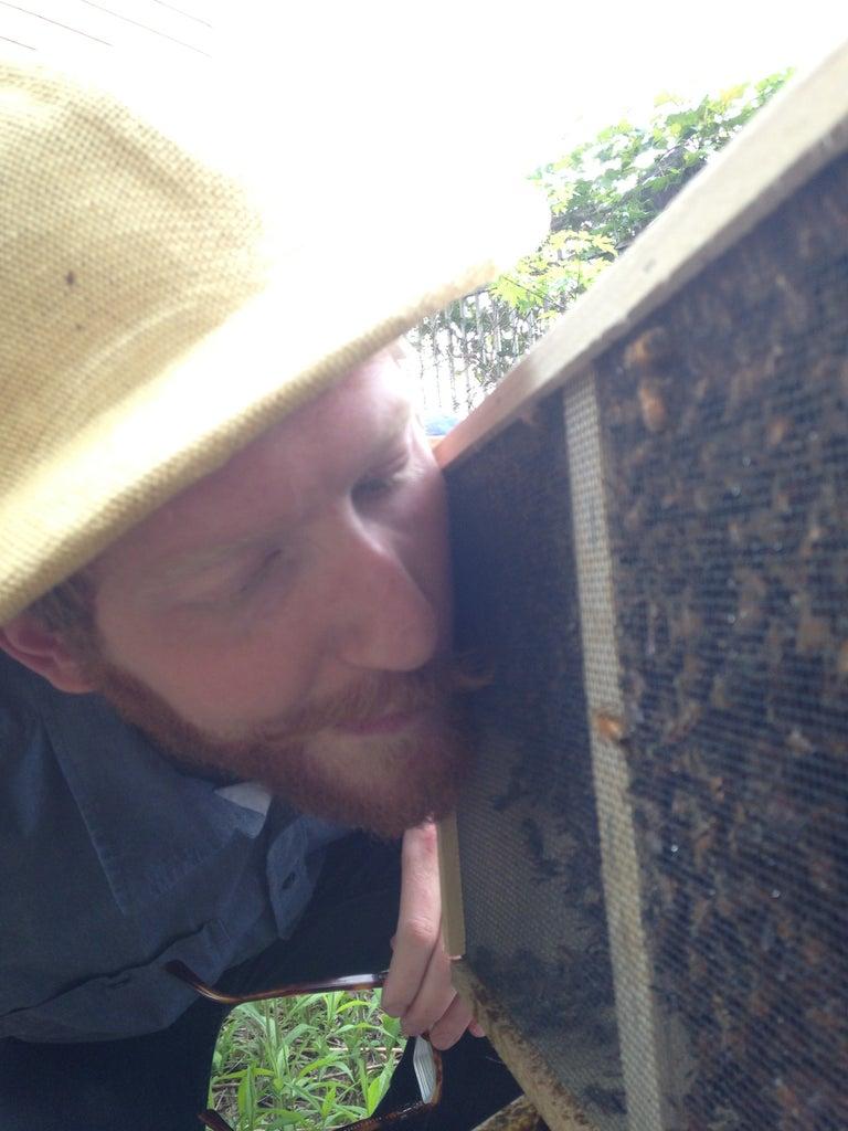 Bonus Points for Bee Kisses
