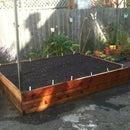 Redwood Garden Box