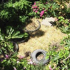Tyre garden tip.JPG