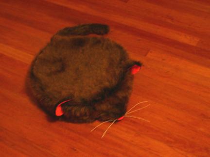 Roomba costume